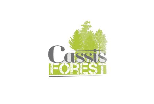 cassisforestt